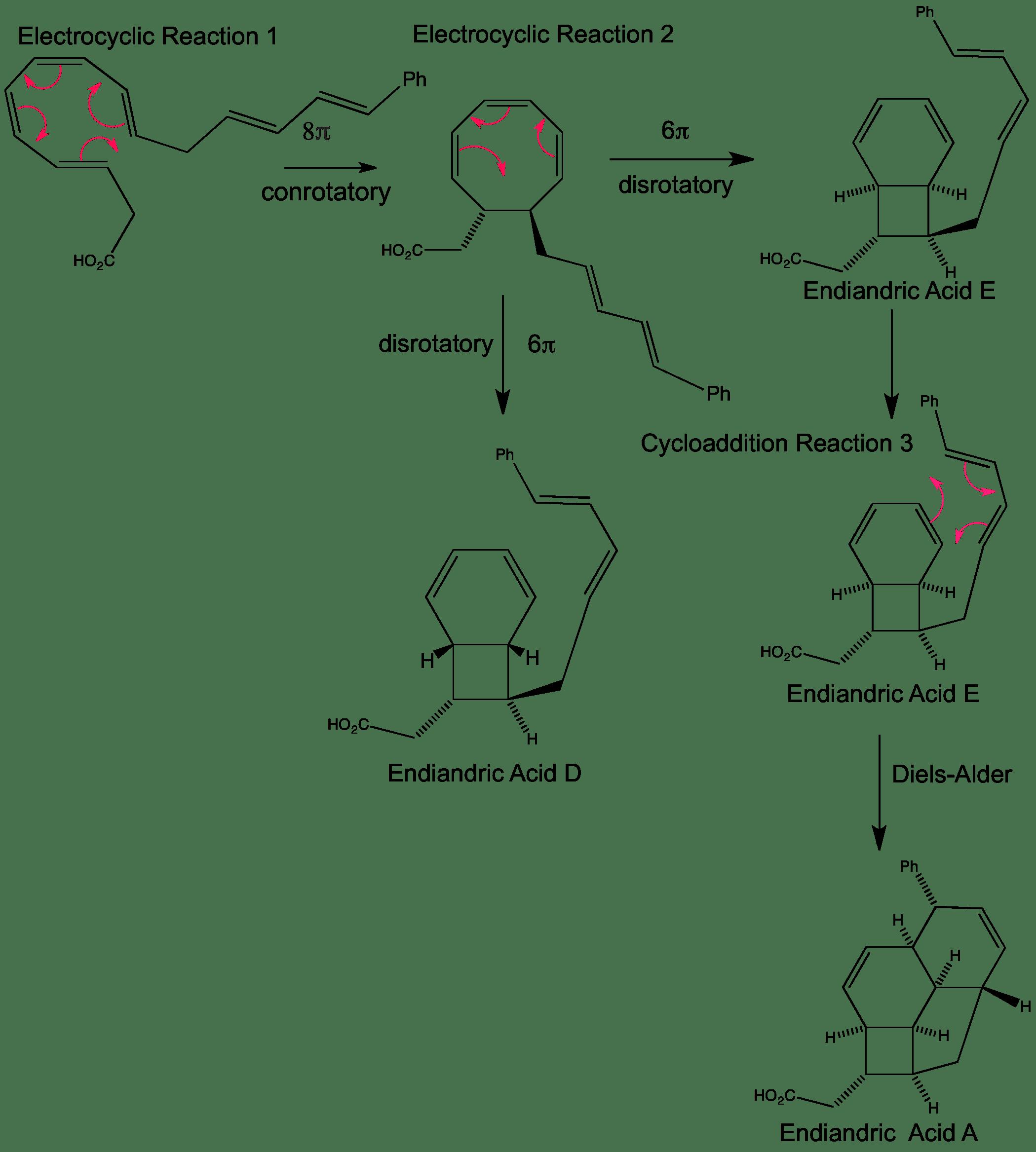Endiandric Acid Cascade — ChemTube3D