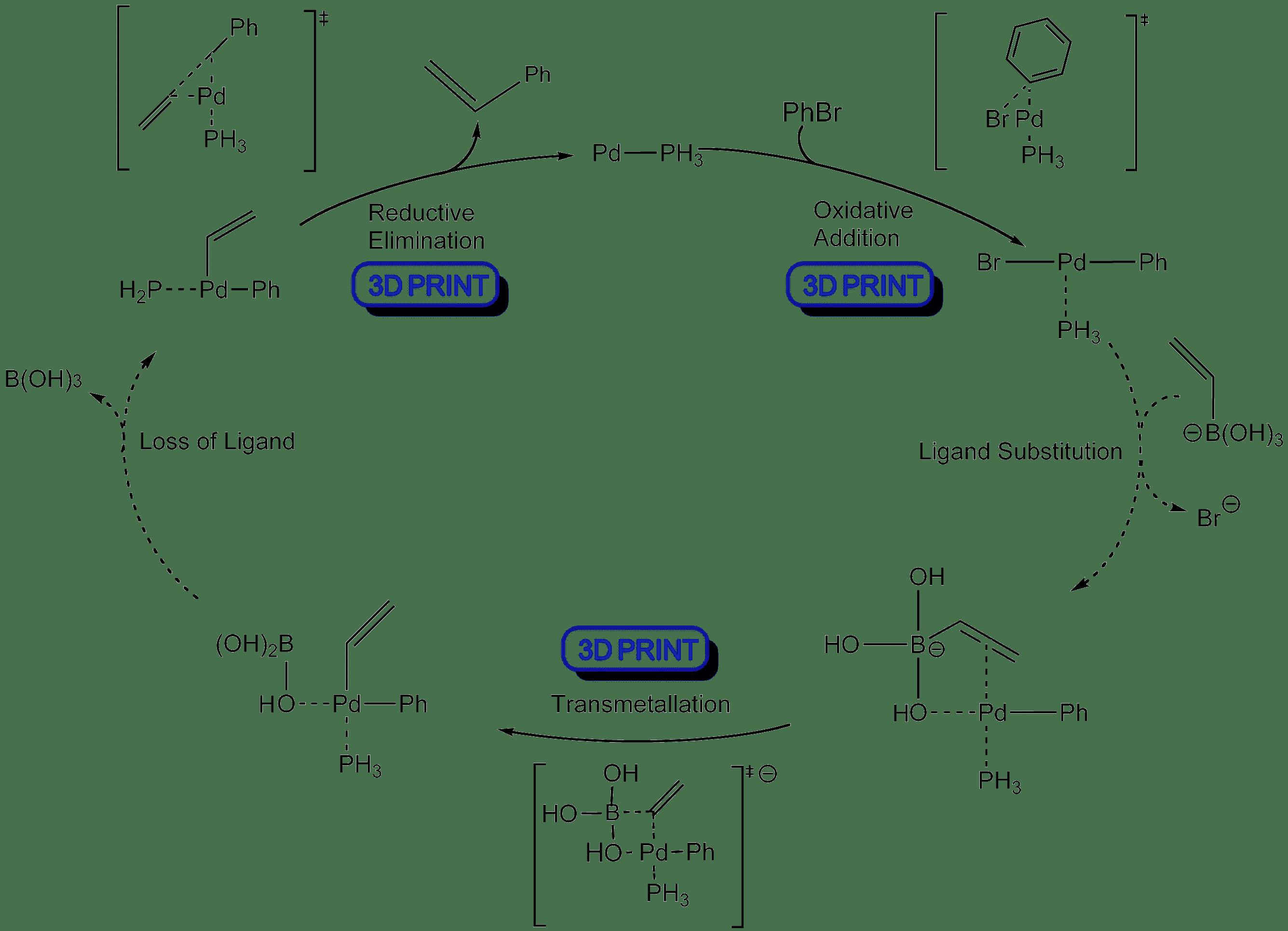 Organopalladium Chemistry The Suzuki Reaction
