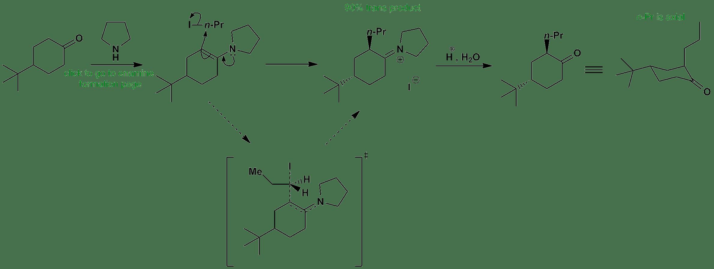 Stereoselective Axial Alkylation Of Cyclohexanone Via Enamine