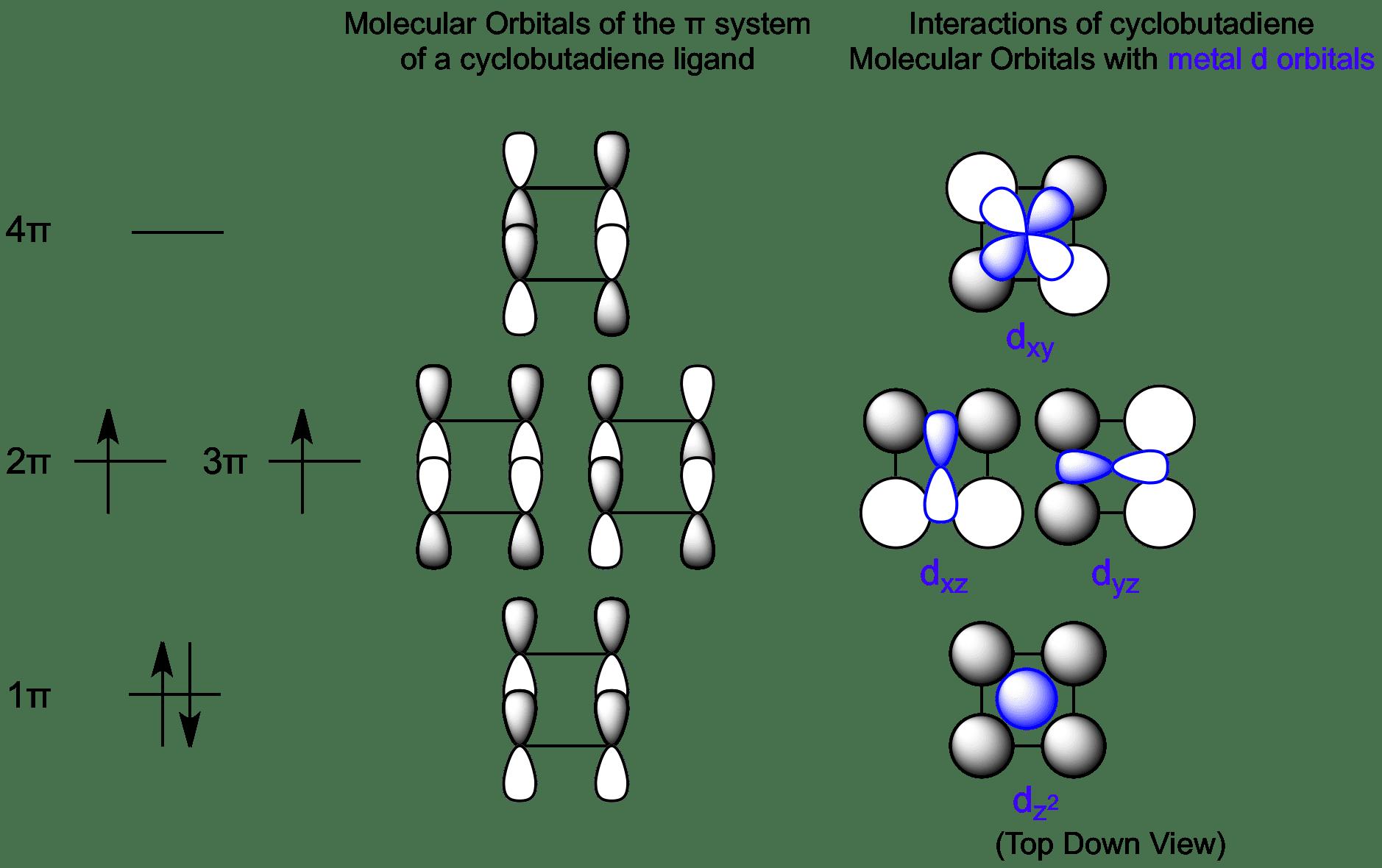 Interactions between Cyclobutadiene Molecular Orbitals and