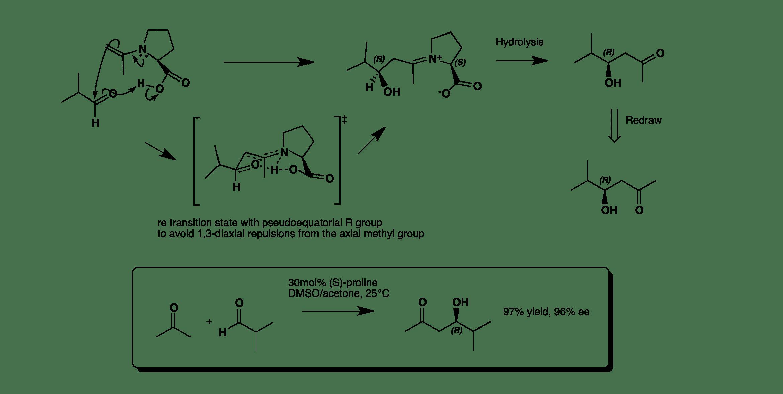Asymmetric Intermolecular Aldol Catalysed By Proline