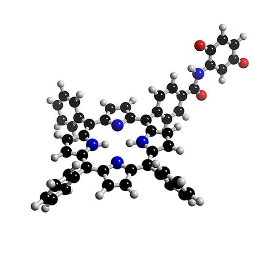 chloroplastmodel