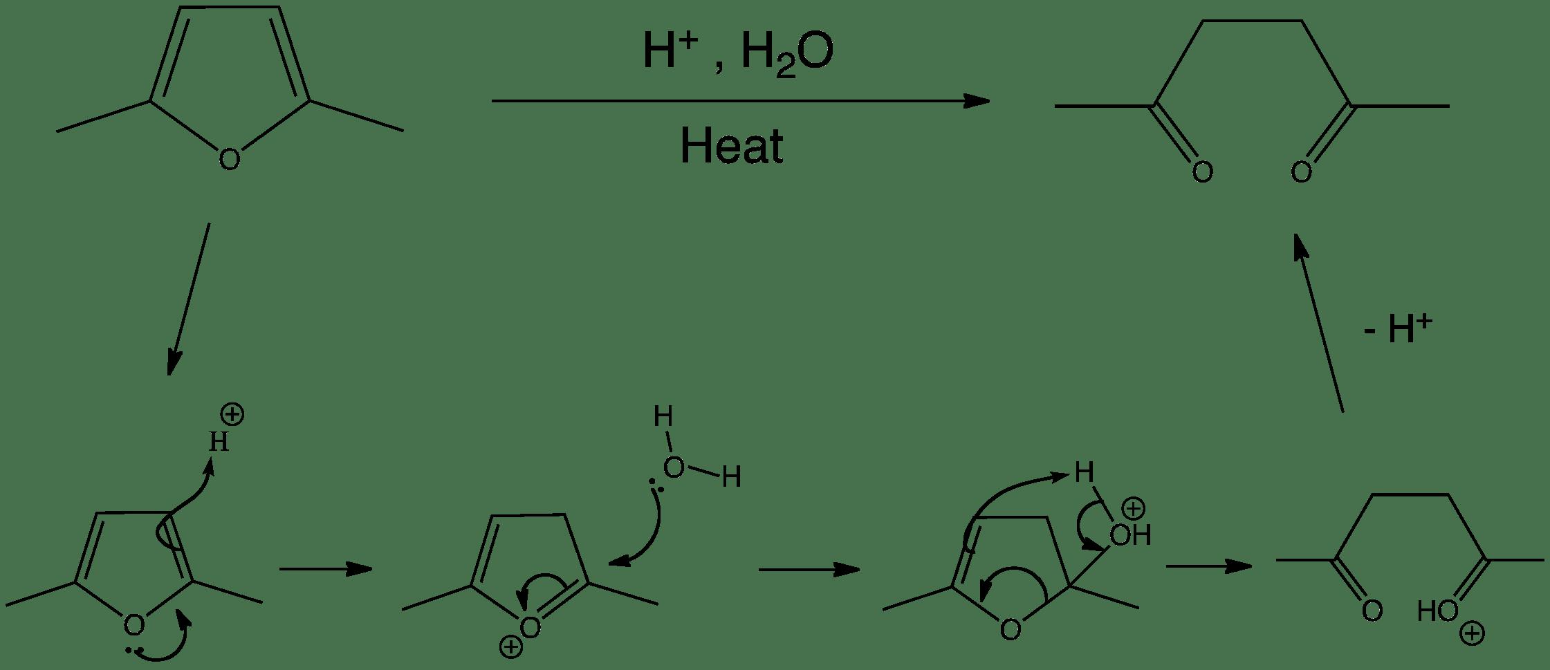 Furan Hydrolysis