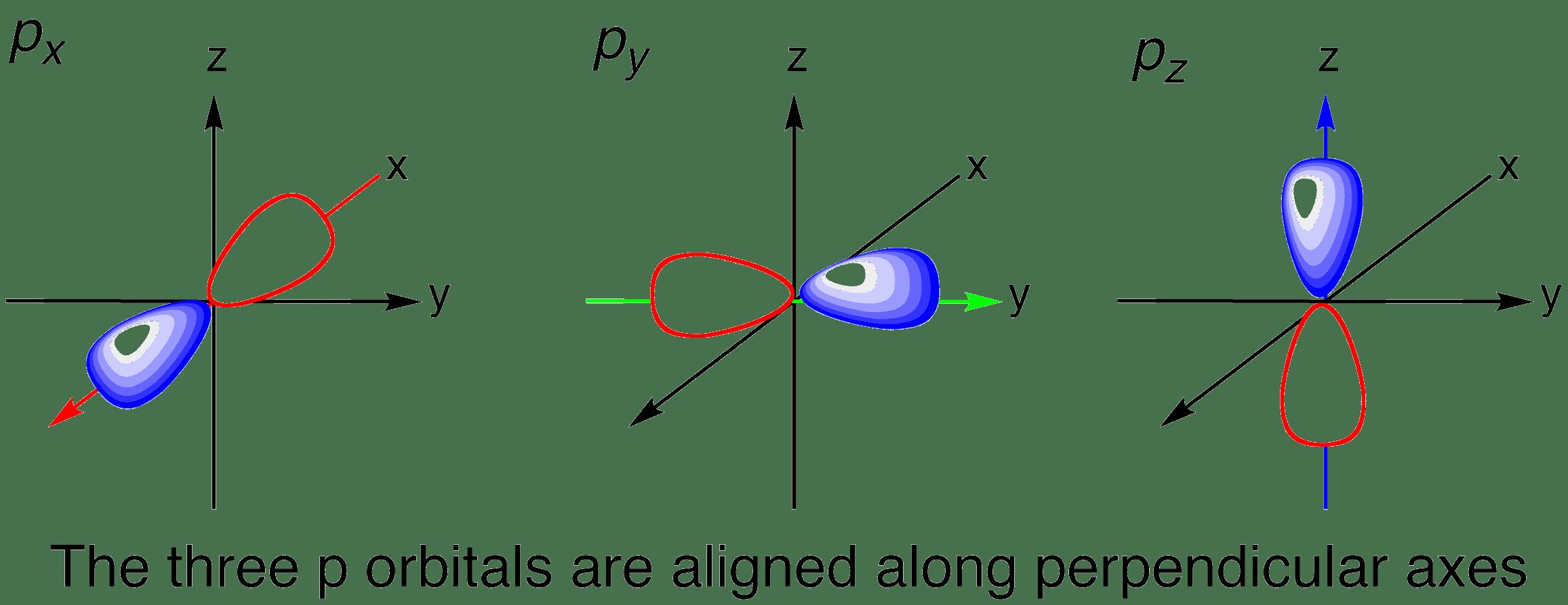 Shape of p-orbitals in 3D