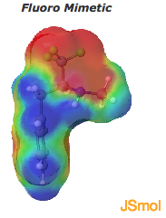 Fluoro mimetic electrostatic surface